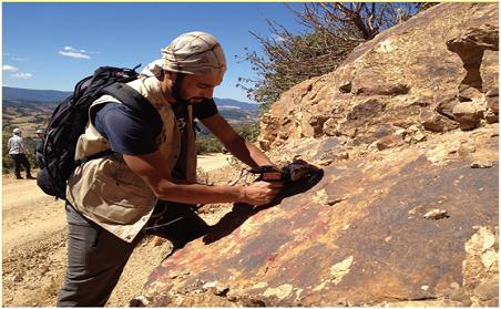 美国SEI近红外矿物分析仪